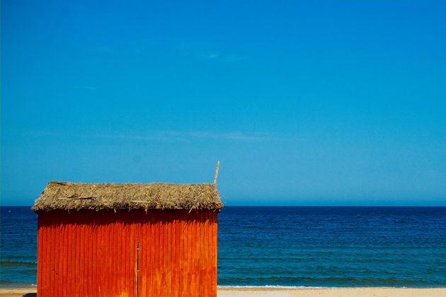 nexus-wallpaper-2-Summer-Collection-Android-Background